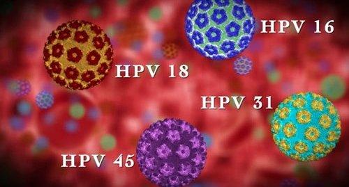 ВПЧ высокого онкогенного риска введение
