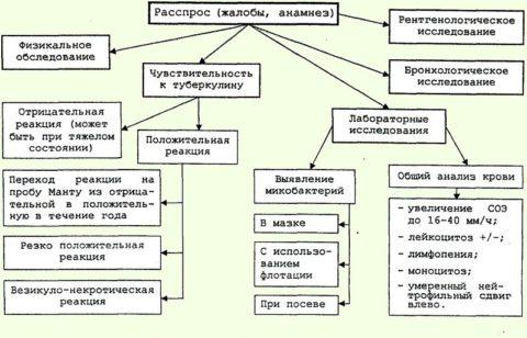 Алгоритм диагностики TBC