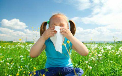 Аллергический бронхит часто возникает в период цветения растений