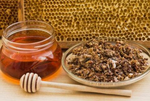Благодаря уникальным полезным свойствам пчелиный прополис можно смело назвать панацеей от всех заболеваний.