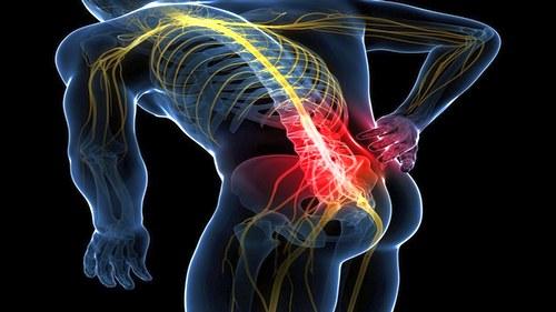 болят все мышцы спины