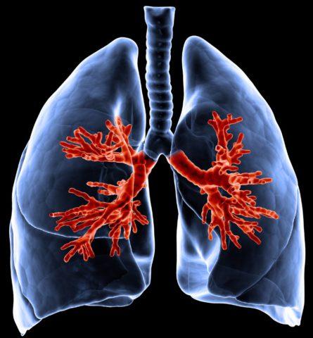 Игнорирование симптомов болезни и несвоевременное лечение приводит к серьезным осложнениям.