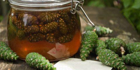 Из шишек и хвои можно приготовить очень полезное и вкусное домашнее лекарство.