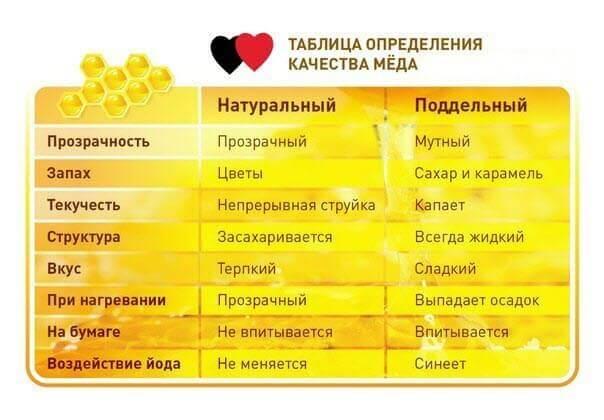 Как отличить поддельный мёд от искусственного