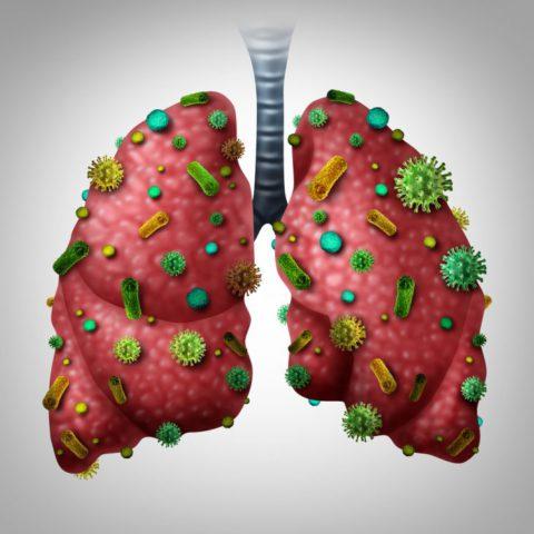 Как патогены проникают к тканям легкого.