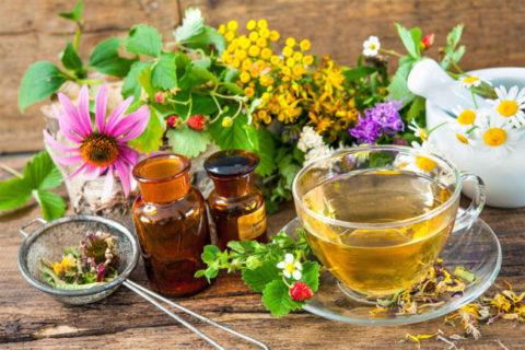Лечебные травяные отвары и чаи помогут укрепить иммунитет, облегчить кашель и вывести мокроту из легких.