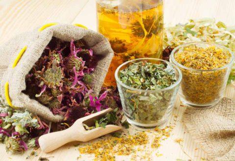 Лекарственные травы - помощь в лечении бронхита от природы.