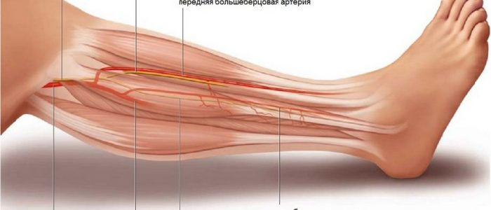 Воспаление малоберцового нерва