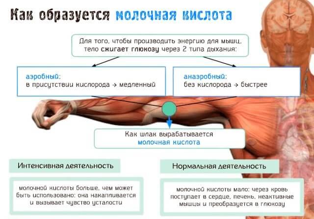 болит поясница после массажа спины