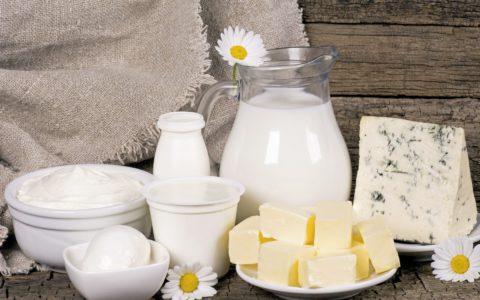 Молочные продукты как неотъемлемая составляющая диеты.