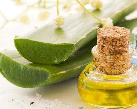 На фото алоэ с медом, в сочетании они обладают противовоспалительным и антибактериальным действием.