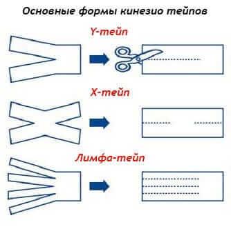 Формы физиотейпа