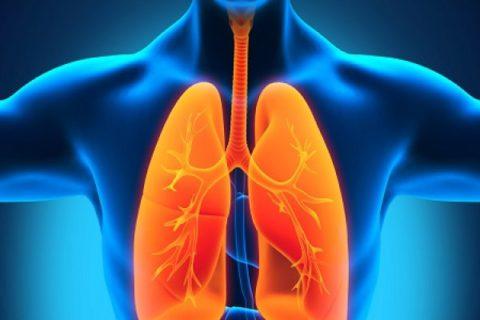 Основные причины развития воспаления легких.
