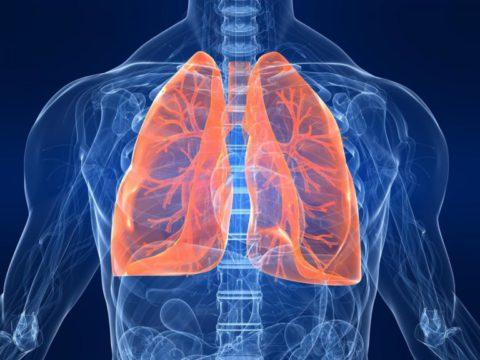 Отказ от курения – необходимая мера, позволяющая сохранить здоровье легких.