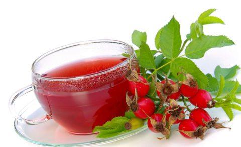 Отвар из плодов шиповника – напиток с высоким содержанием витамина С.