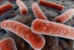 Артрит и туберкулез