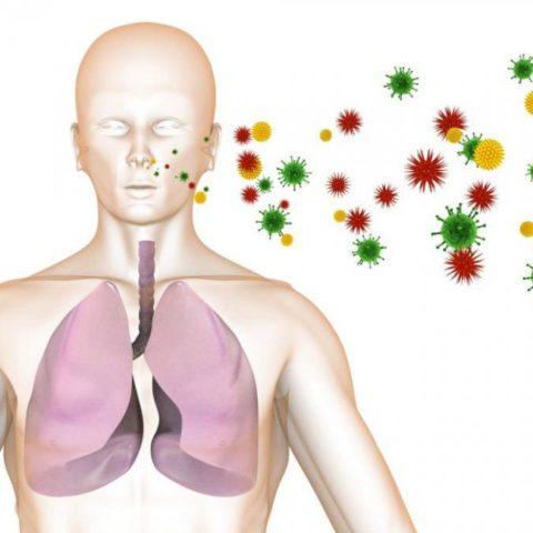 Пневмоцисты передаются воздушно-капельным путем