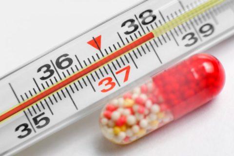 Повышение температуры тела – причина для отказа от прогулки.