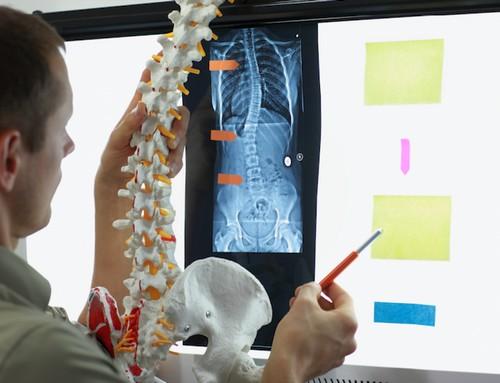 болят мышцы спины вдоль позвоночника причины