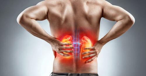 Болезни почек причина боли в середине спины