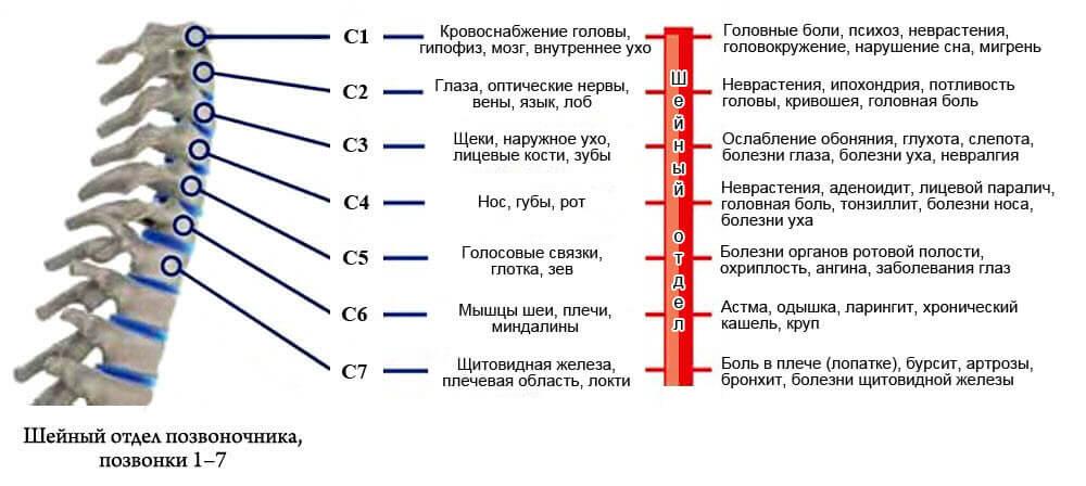 Список признаков гррыжи