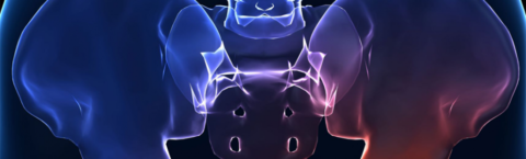 Прогноз восстановления тазобедренного сустава без оперативного вмешательства