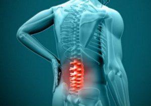 Растирка для суставов и мышц