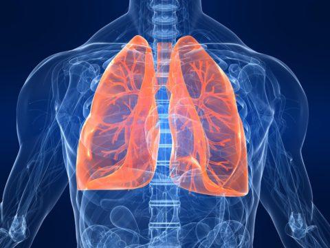 Риски развития туберкулеза.