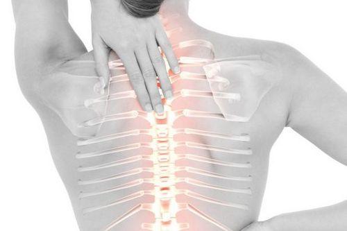 циркулярные протрузии грудного отдела позвоночника
