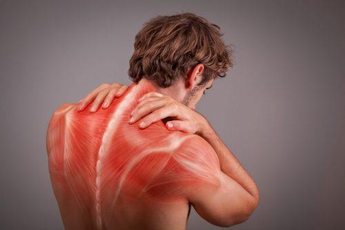 Спазмы и растяжения мышц очень часто вызывают боль в пояснице