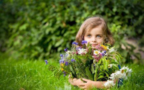 Стать причиной развития аллергического бронхита может обыкновенная пыльца.