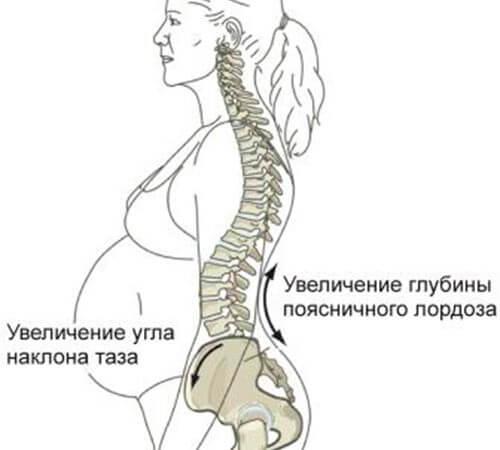 Таз при беременности