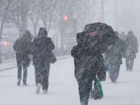 В морозный или ветреный день лучше остаться дома