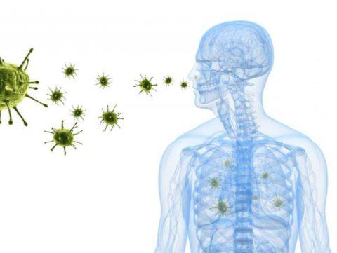 В организм вирусы попадают с частичками слюны и слизи при кашле, чихании и разговоре (на фото)